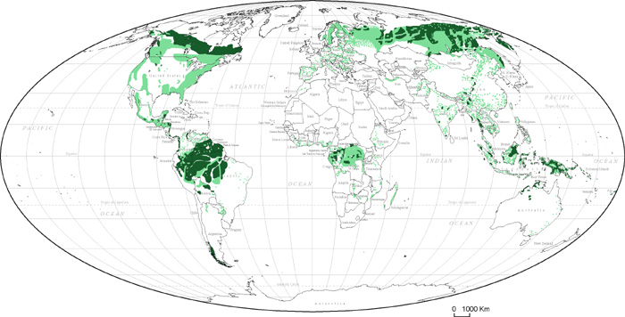 Map Of World Forests.Destruction Of World S Forests Maps